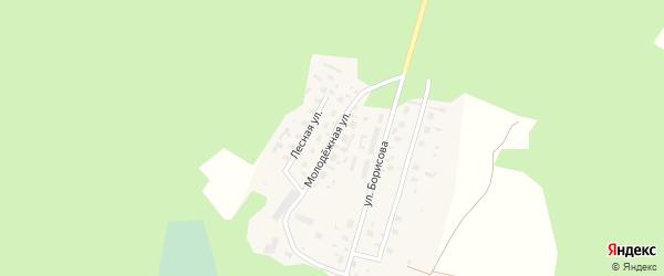 Молодежная улица на карте деревни Курорта Солонихи с номерами домов