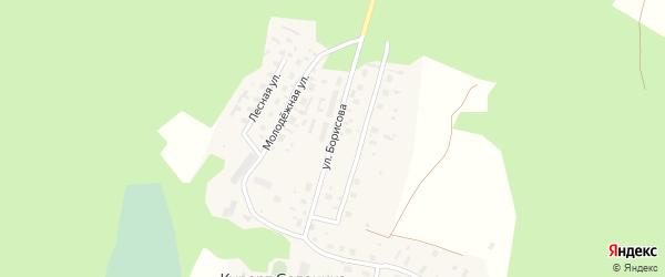 Улица Борисова на карте деревни Курорта Солонихи с номерами домов