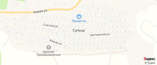 Центральная улица на карте деревни Сульцы с номерами домов