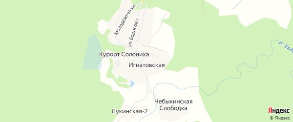 Карта Игнатовской деревни в Архангельской области с улицами и номерами домов