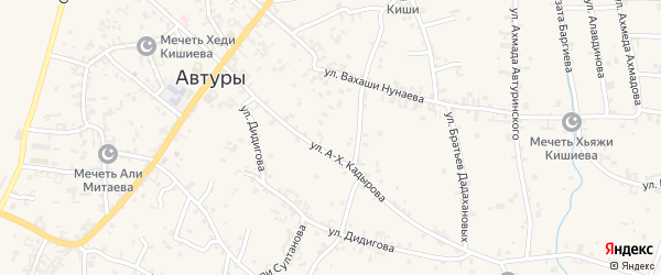 Улица им Ибрагима Умпашаева на карте села Автуры с номерами домов