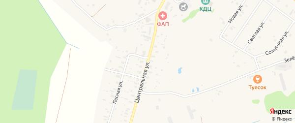 Центральная улица на карте Ершевской деревни с номерами домов