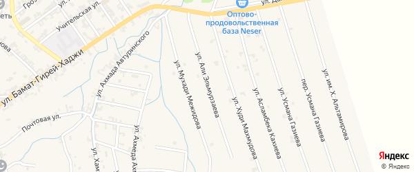 Улица Али Эльмурзаева на карте села Автуры с номерами домов