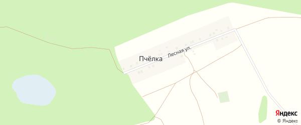 Лесная улица на карте деревни Пчелки с номерами домов