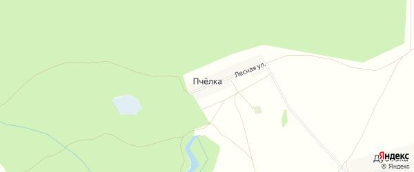 Карта деревни Пчелки в Чувашии с улицами и номерами домов