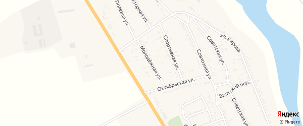 Молодежная улица на карте села Зубовки с номерами домов