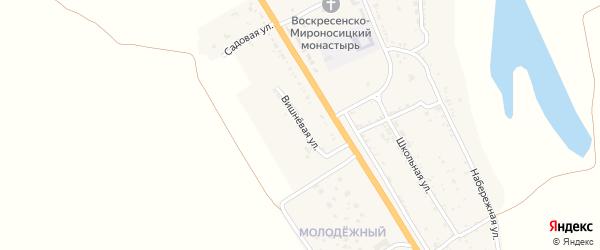 Вишневая улица на карте села Зубовки с номерами домов