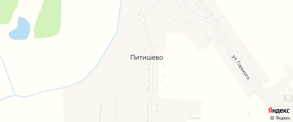 Улица Пушкина на карте деревни Питишево с номерами домов