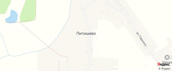 Заречная улица на карте деревни Питишево с номерами домов