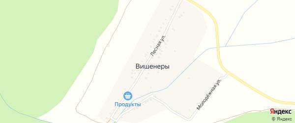 Лесная улица на карте деревни Вишенер с номерами домов