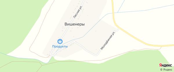 Молодежная улица на карте деревни Вишенер с номерами домов