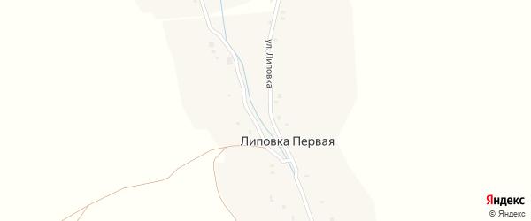 Улица Липовка на карте Липовки Первой деревни с номерами домов