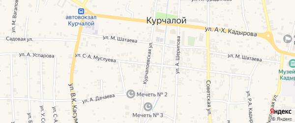 Курчалоевская улица на карте села Курчалой с номерами домов