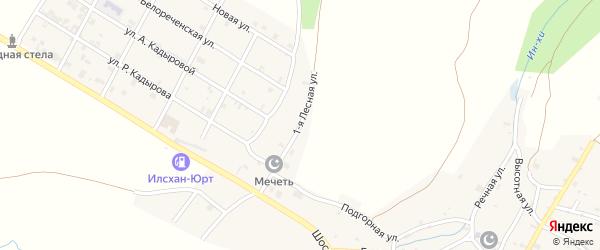 Лесная 1-я улица на карте села Илсхан-Юрт с номерами домов