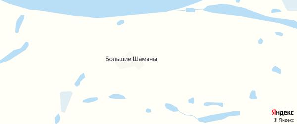 Карта деревни Большие Шаманы в Архангельской области с улицами и номерами домов