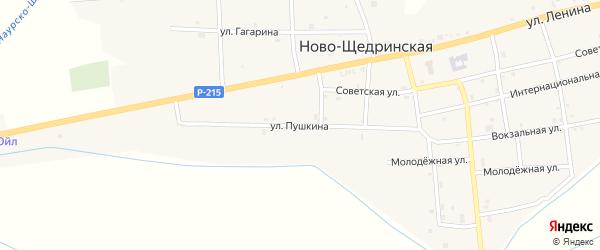 Улица Пушкина на карте Ново-Щедринская станицы с номерами домов