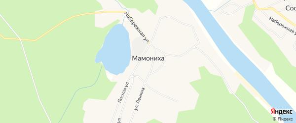 Карта поселка Мамонихи в Архангельской области с улицами и номерами домов