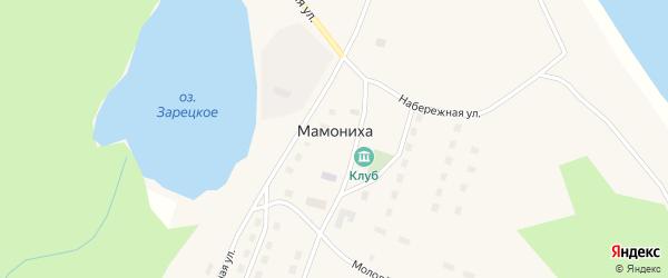 Дорожная улица на карте поселка Мамонихи с номерами домов
