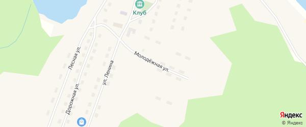 Молодежная улица на карте поселка Мамонихи с номерами домов