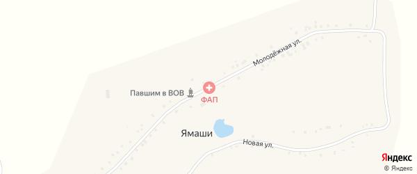 Молодежная улица на карте села Первые Хоршеваши с номерами домов