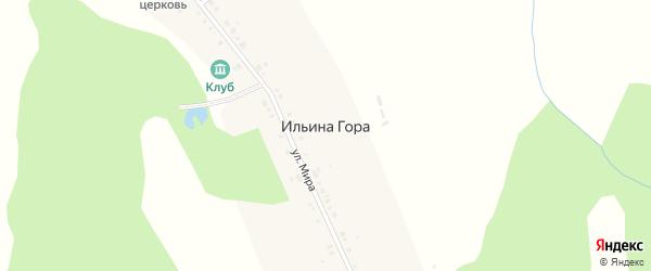 Улица Мира на карте села Ильины Горы с номерами домов