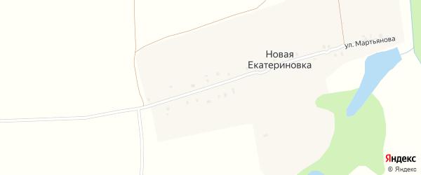 Улица Мартьянова на карте деревни Новой Екатериновки с номерами домов