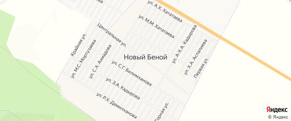 Карта села Новый-Беной в Чечне с улицами и номерами домов