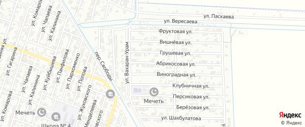 Переулок Виноградная на карте села Нижний-Нойбер с номерами домов