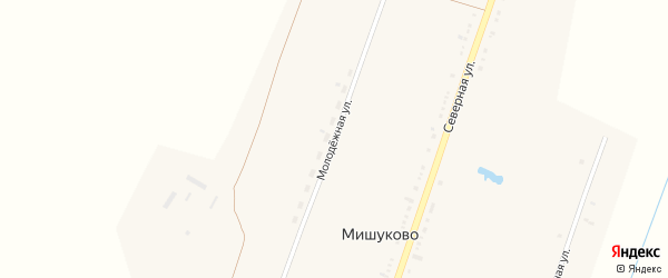 Молодежная улица на карте села Мишуково с номерами домов