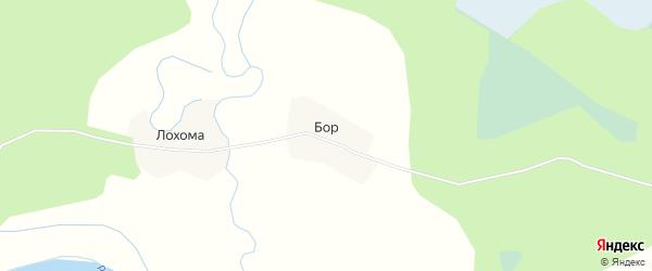 Карта деревни Бора в Архангельской области с улицами и номерами домов