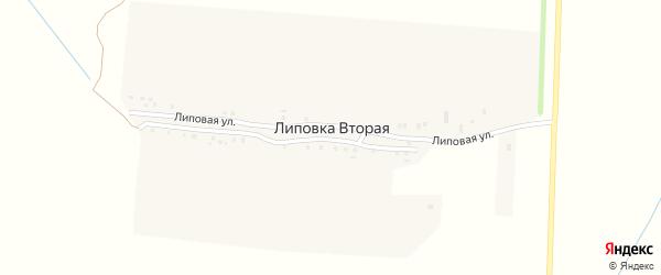 Липовая улица на карте Липовки Второй деревни с номерами домов