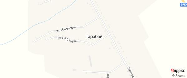 Новая улица на карте деревни Тарабая с номерами домов