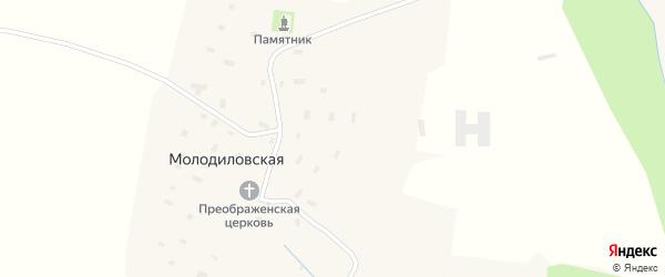 Центральная улица на карте Молодиловской деревни с номерами домов