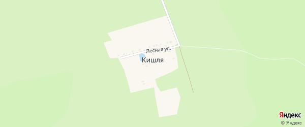 Лесная улица на карте деревни Кишля с номерами домов