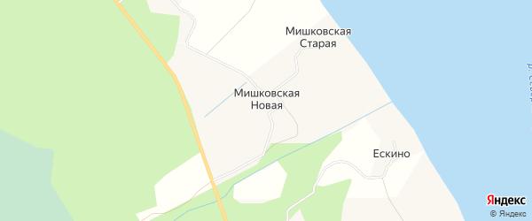 Карта Мишковской Новой деревни в Архангельской области с улицами и номерами домов