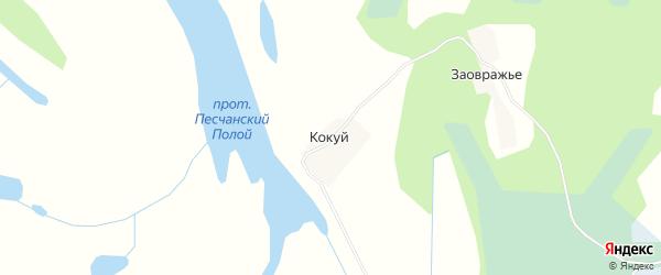 Карта деревни Кокуя в Архангельской области с улицами и номерами домов