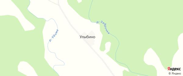 Карта деревни Улыбино в Архангельской области с улицами и номерами домов