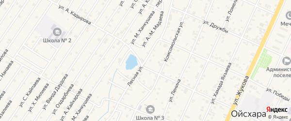 Лесная улица на карте села Нового Энгеной с номерами домов