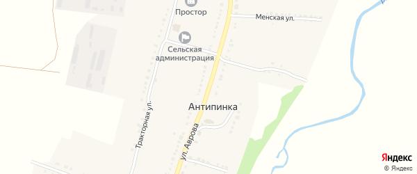 Улица Аврова на карте села Антипинка с номерами домов