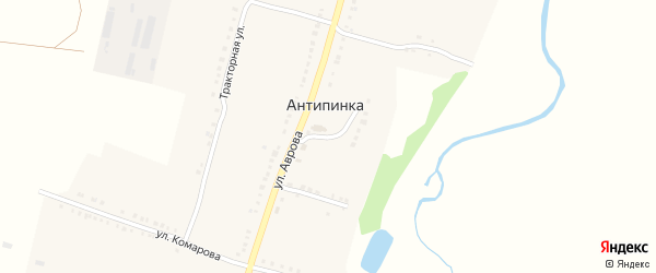 Зеленая улица на карте села Антипинка с номерами домов