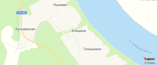 Карта деревни Княщины в Архангельской области с улицами и номерами домов