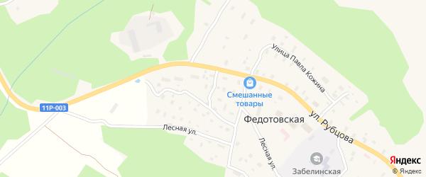 Северный переулок на карте Федотовской деревни с номерами домов