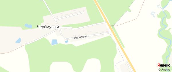 Лесная улица на карте поселка Черемушки с номерами домов