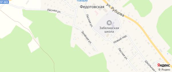 Зеленая улица на карте Федотовской деревни с номерами домов