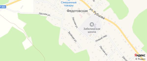 Кооперативный переулок на карте Федотовской деревни с номерами домов