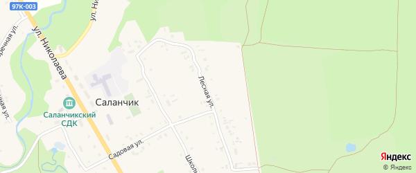 Лесная улица на карте поселка Саланчик с номерами домов