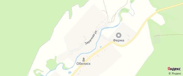 Заречная улица на карте деревни Петропавловска с номерами домов