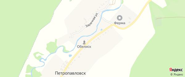 Улица Островского на карте деревни Петропавловска с номерами домов