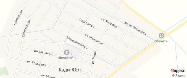 Улица Мичурина на карте села Кади-Юрт с номерами домов