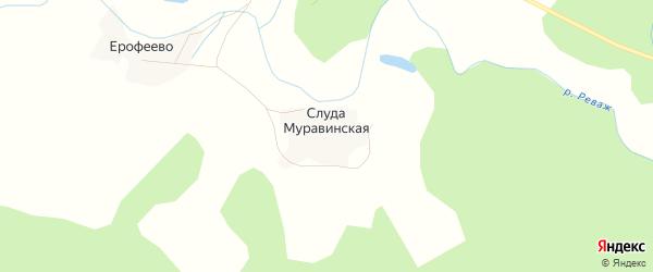 Карта Слуды Муравинской деревни в Архангельской области с улицами и номерами домов